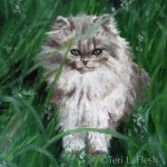 Grey Cat in Grass, painted about age sixteen